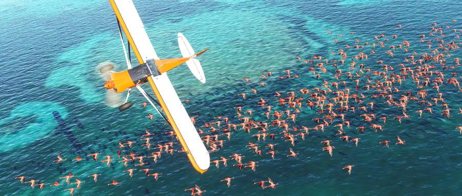 Requerimientos Flight Simulator 2020 Techandising 2